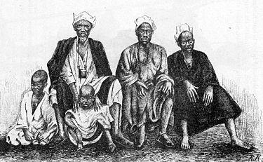 バンバラ族の肖像